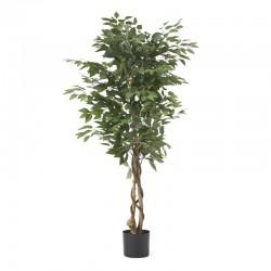 Yapay Benjamin Ağacı - YBA1