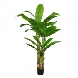 Yapay Muz Ağacı - YMA1